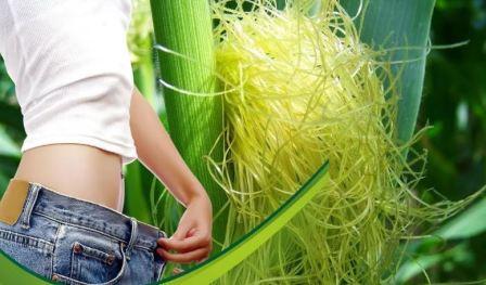 Как заваривать кукурузные рыльца для похудения